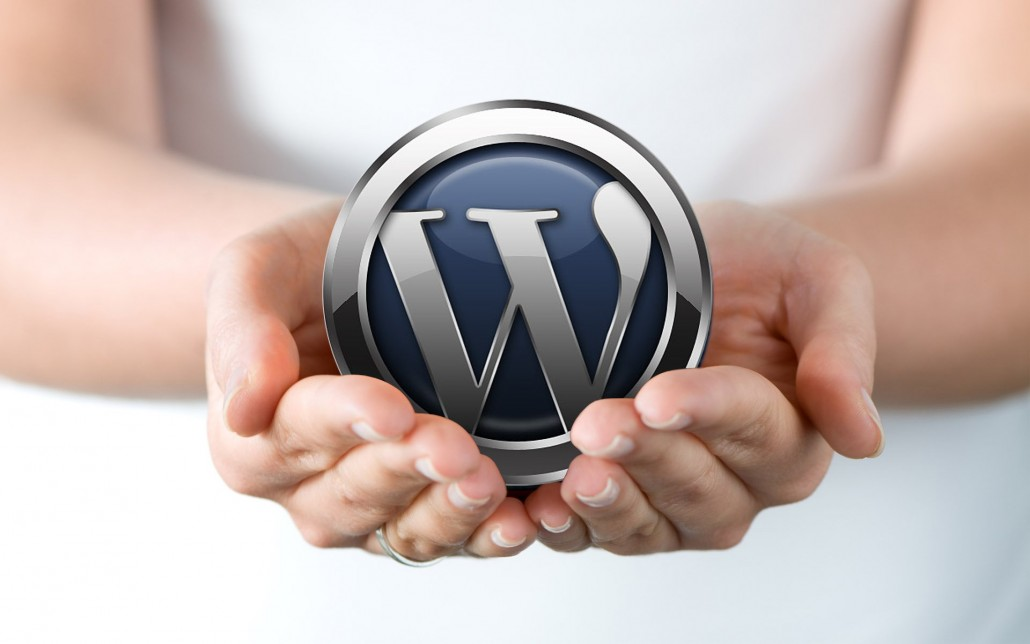 WordPress-in-hands